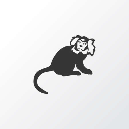 Marmoset icon symbol. Premium quality isolated ape element in trendy style.