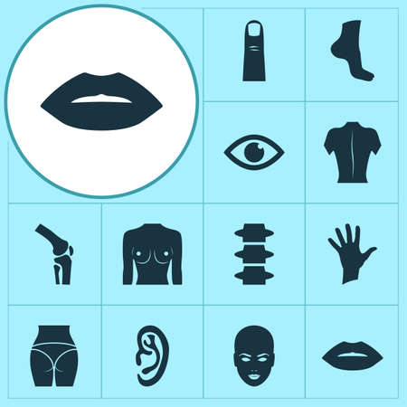 Physique icons set with spine, ear, joint and other gesture elements. Isolated illustration physique icons.