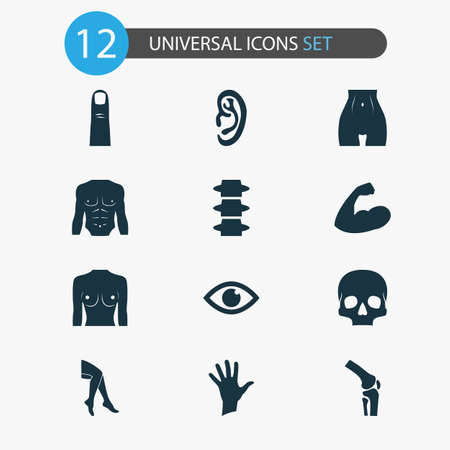 Part icons set with palm, breast, eye and other knee   elements. Isolated vector illustration part icons.