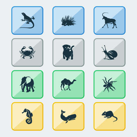 Zoo icons set with antelope, snail, sea horse and other gecko  elements. Isolated  illustration zoo icons.