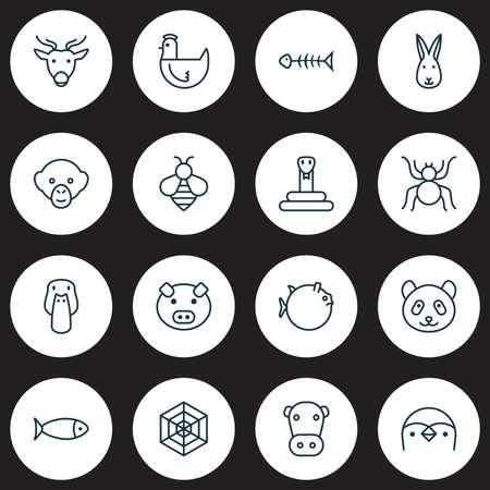 Animal icons set with mallard, rabbit, monkey and other bunny  elements. Isolated vector illustration animal icons. 向量圖像