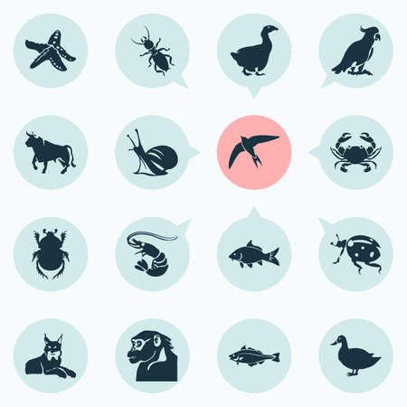 Animal icons set with haddock, bull, snail and other cancer   elements. Isolated vector illustration animal icons.