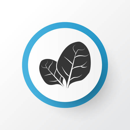 Sorrel icon symbol. Premium quality isolated herb element in trendy style.