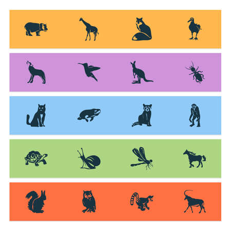 Animal icons set with snail, lemur, hummingbird and other termite  elements. Isolated vector illustration animal icons.