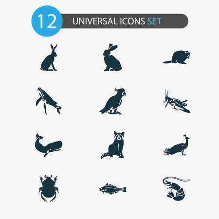 Animal icons set with beaver, haddock, cockatoo and other bunny