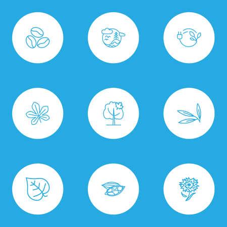 Ecology icons line style set with chestnut leaf, bio energy, cardamon and other eco plug   elements. Isolated vector illustration ecology icons. Illustration