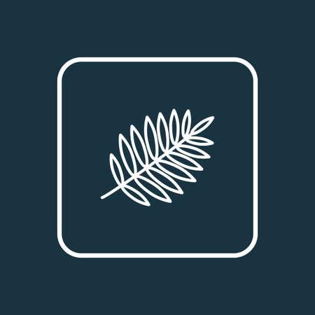 Rowan icon line symbol. Premium quality isolated lush element in trendy style. Illustration