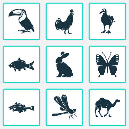 Zoo icons set with dragonfly, butterfly, rabbit and other codfish   elements. Isolated vector illustration zoo icons.