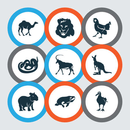 Animal icons set with lion, antelope, snake and other gull  elements. Isolated vector illustration animal icons. Illustration
