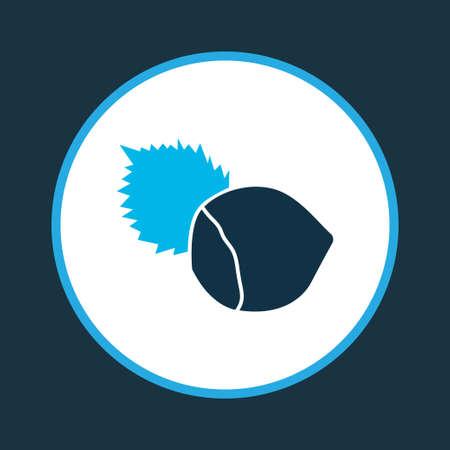 Hazelnut icon colored symbol. Premium quality isolated filbert element in trendy style. Illustration