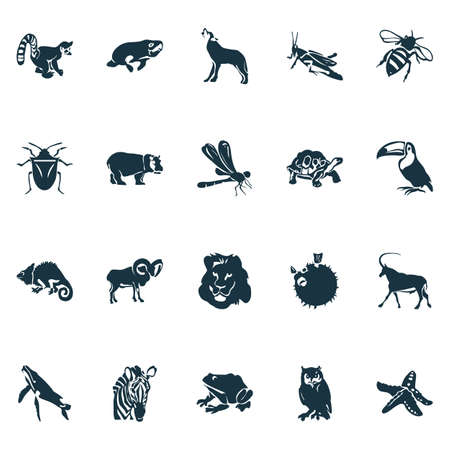 Fauna icons set with whale, owl, dragonfly and other tortoise