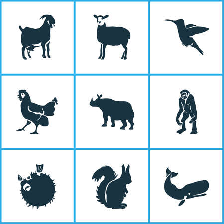 Zoo icons set with cachalote, hummingbird, chicken and other colibri   elements. Isolated vector illustration zoo icons. Illustration