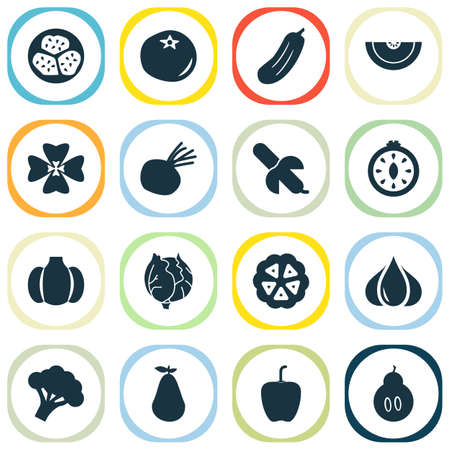 Fruit icons set with cocoa beans, kiwano, gourd and other duchess elements. Isolated vector illustration fruit icons.