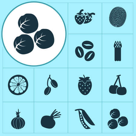 Food icons set with legume, asparagus, brussels sprouts and other brussels cabbage   elements. Isolated vector illustration food icons.