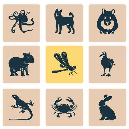 Animal icons set elements. Isolated vector illustration animal icons.