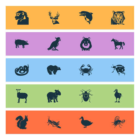 Zoo icons set with crab, hamster, duck and other housefly