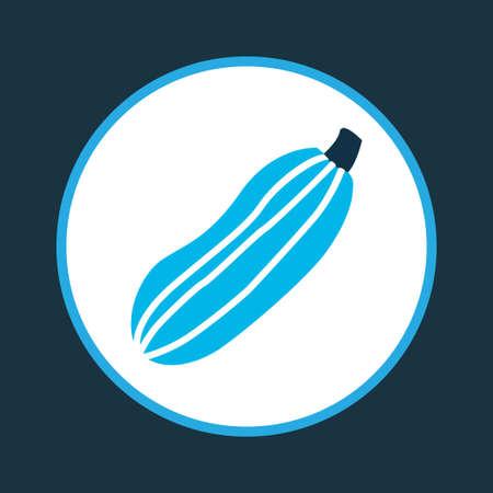 Zucchini icon colored symbol. Premium quality isolated squash element in trendy style.