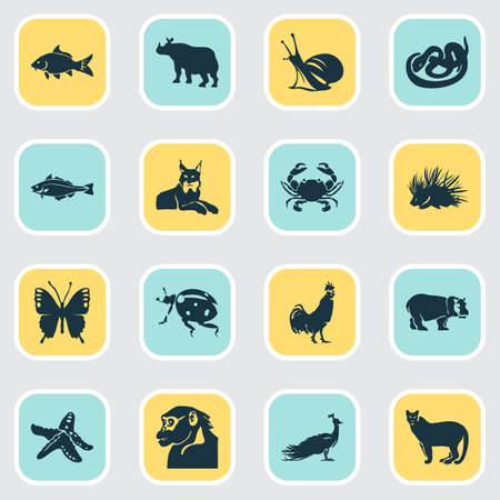 Fauna icons set with porcupine, carp, lynx and other peafowl   elements. Isolated vector illustration fauna icons. Illustration