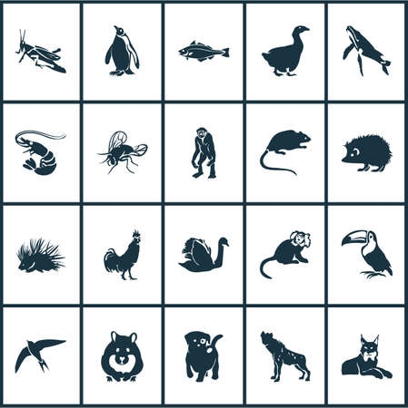 Zoo icons set with hyena, haddock, fly and other housefly