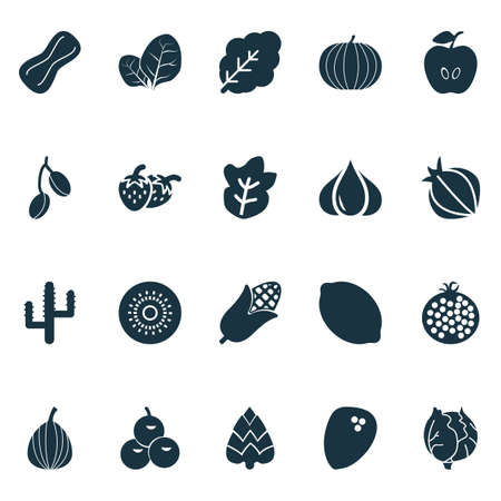 Fruit icons set with fruit, citrus, garlic and other desert flower