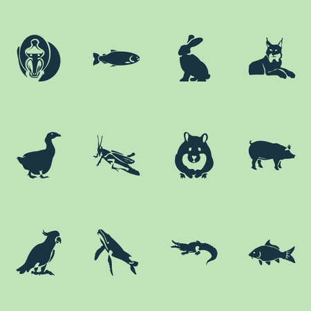 Fauna icons set with carp, goose, salmon and other mantis   elements. Isolated vector illustration fauna icons.