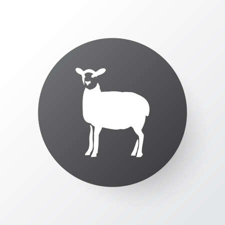 Sheep icon symbol. Premium quality isolated lamb element in trendy style. 矢量图像