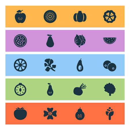 Vegetable icons set with kiwifruit, artichoke, cocoa beans and other kiwi elements. Isolated vector illustration vegetable icons.