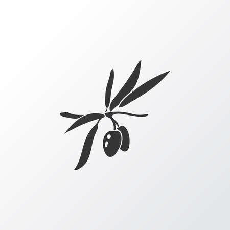 Olive branch icon symbol. Premium quality isolated virgin element in trendy style.