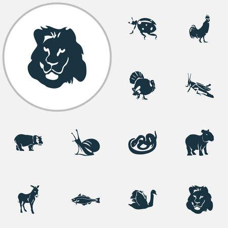 Zoo icons set with capybara, ladybird, donkey and other hippopotamus elements. Isolated vector illustration zoo icons.