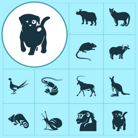 Zoo icons set with antelope, ox, puppy and other joey elements. Isolated vector illustration zoo icons.