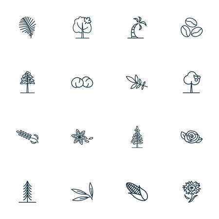 Landscape icons line style set with willow leaf, star anise, coffee bean and other oak   elements. Isolated  illustration landscape icons. 写真素材