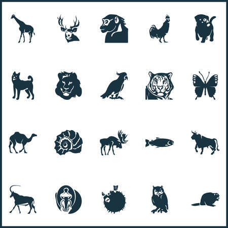 Zoo icons set with rooster, owl, beaver and other scallop elements. Isolated vector illustration zoo icons.