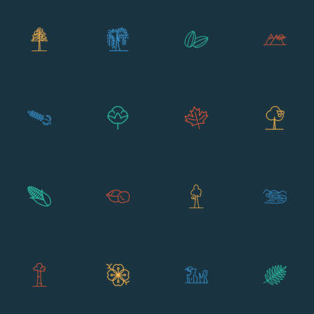 Nature icons line style set with maple, sequoia, sakura flower and other maize elements. Isolated vector illustration nature icons.