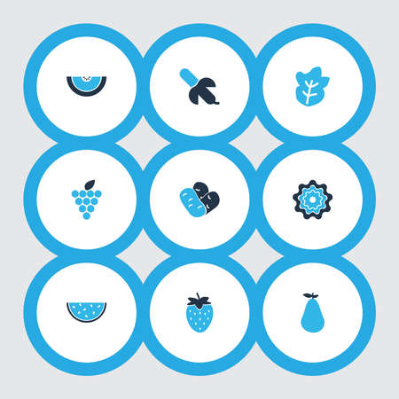 Food icons colored set with elements. Isolated vector illustration food icons.