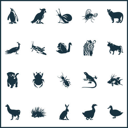 Fauna icons set with hogfish, swan, hare and other duck elements. Isolated vector illustration fauna icons. 向量圖像