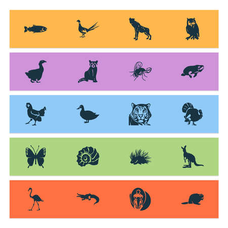Zoo icons set with beaver, raccoon, turkey and other poultry elements. Isolated vector illustration zoo icons.