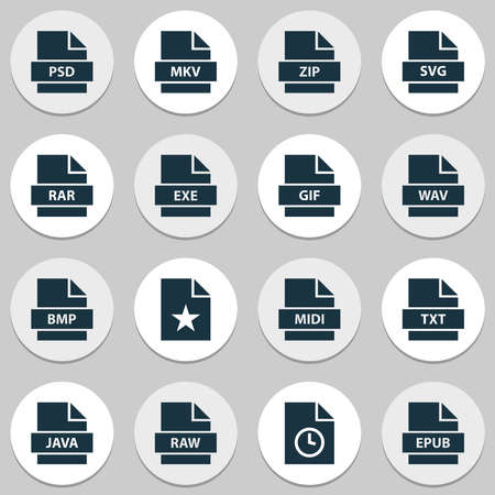 Types icons set with epub, raw, psd and other svg elements. Isolated illustration types icons.