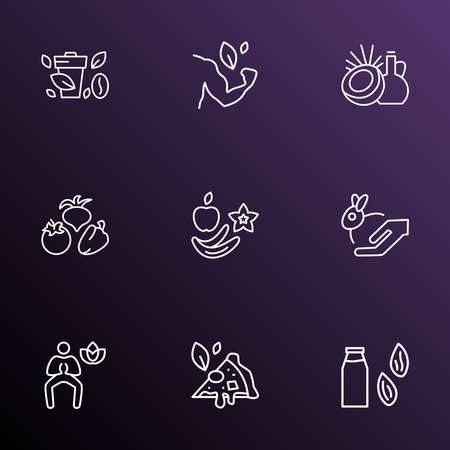 Vegetarian icons line style set with coconut oil, fruits, strong vegan and other meditation elements. Isolated vector illustration vegetarian icons.