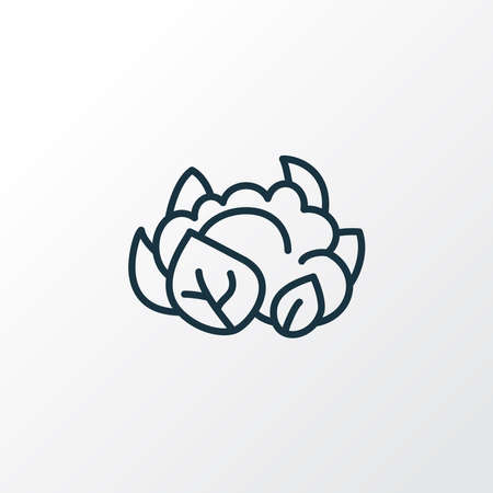 Cauliflower icon line symbol. Premium quality isolated cabbage element in trendy style. Illustration