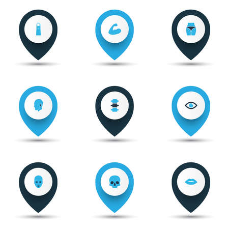 Physique icons colored set with eye, face, arm and other human elements. Isolated vector illustration physique icons.