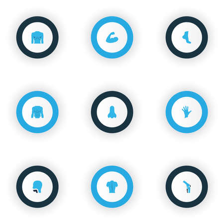 Part icons colored set with arm, joint, back and other body elements. Isolated vector illustration part icons.