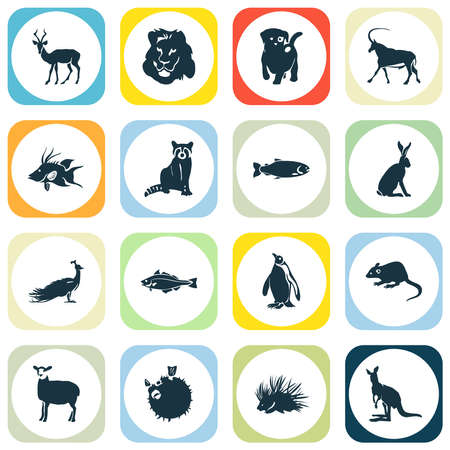 Fauna icons set with raccoon, porcupine, hogfish and other rat elements. Isolated vector illustration fauna icons.
