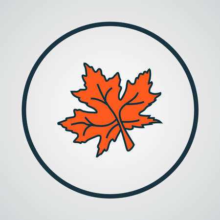 Maple leaf icon colored line symbol. Premium quality isolated nature element in trendy style.