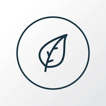 Leaf icon line symbol. Premium quality isolated foliage element in trendy style. Ilustração
