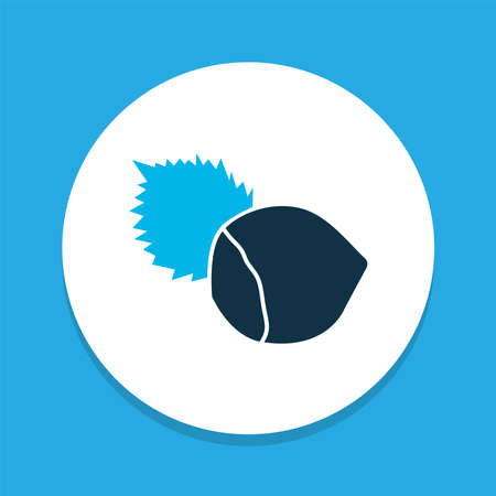 Hazelnut icon colored symbol. Premium quality isolated filbert element in trendy style. Ilustração
