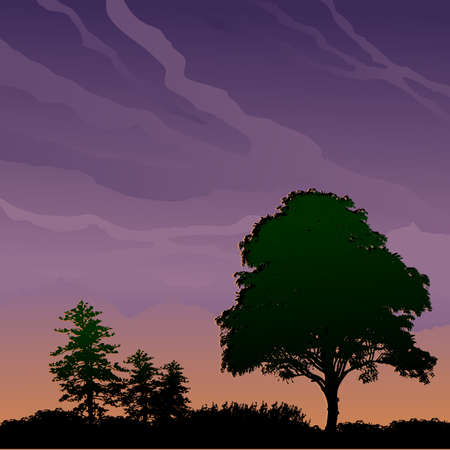 Landscape with trees at dusk