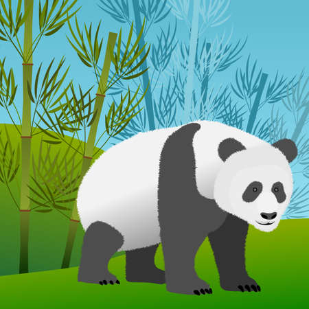 Design with panda bear and bamboo vector illustration. Illustration