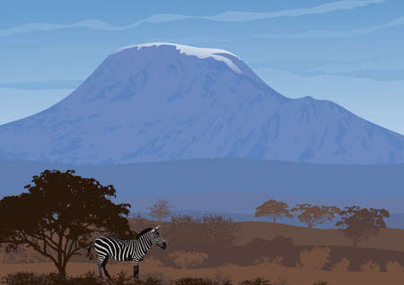 Natural landscape of African savannah with Mount Kilimanjaro in background. In the foreground, the zebra in the shade of a tree. Vector illustration.