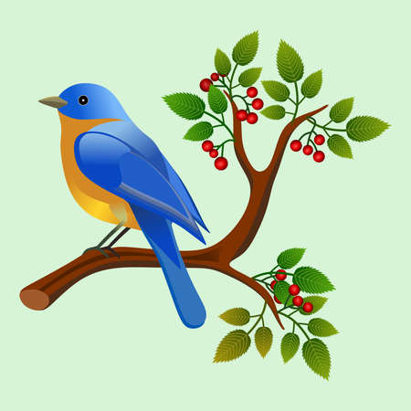 Floral frame with colorful bird over branch. Ideal for integrating a personalized message.Vector Illustration. Foto de archivo - 110860444