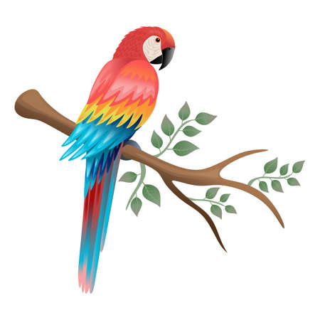 Colorful parrot on tree branch with leaves. Isolated on white background. Illustration.Ideal for illustrating various media such as cards, tshirts and others. Banco de Imagens
